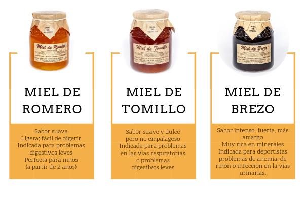 ¿Qué miel elijo? Te contamos las propiedades y recomendaciones de cada tipo de miel