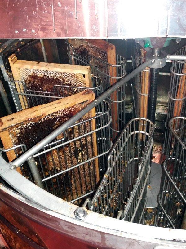 extractor de miel con la fuerza centrífuga